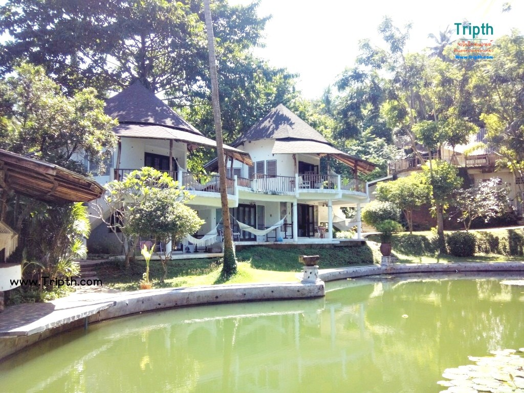 บ้านริมสระเกาะหมากโคโค่เคป รีสอร์ท