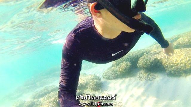 ดำน้ำหาดถ้ำพังเกาะสีชัง