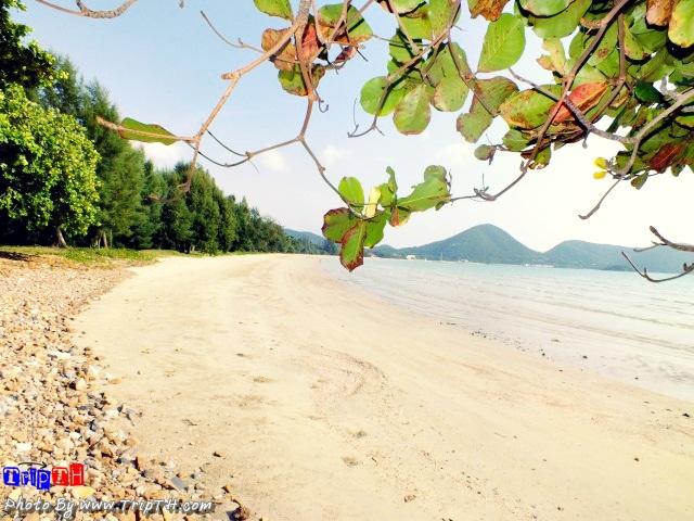 หาดเตยงามยาวเยียดกว่า 1200 เมตร