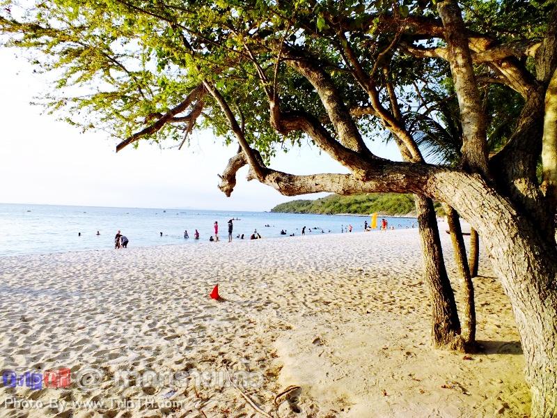 บรรยากาศบริเวณหาด (2)