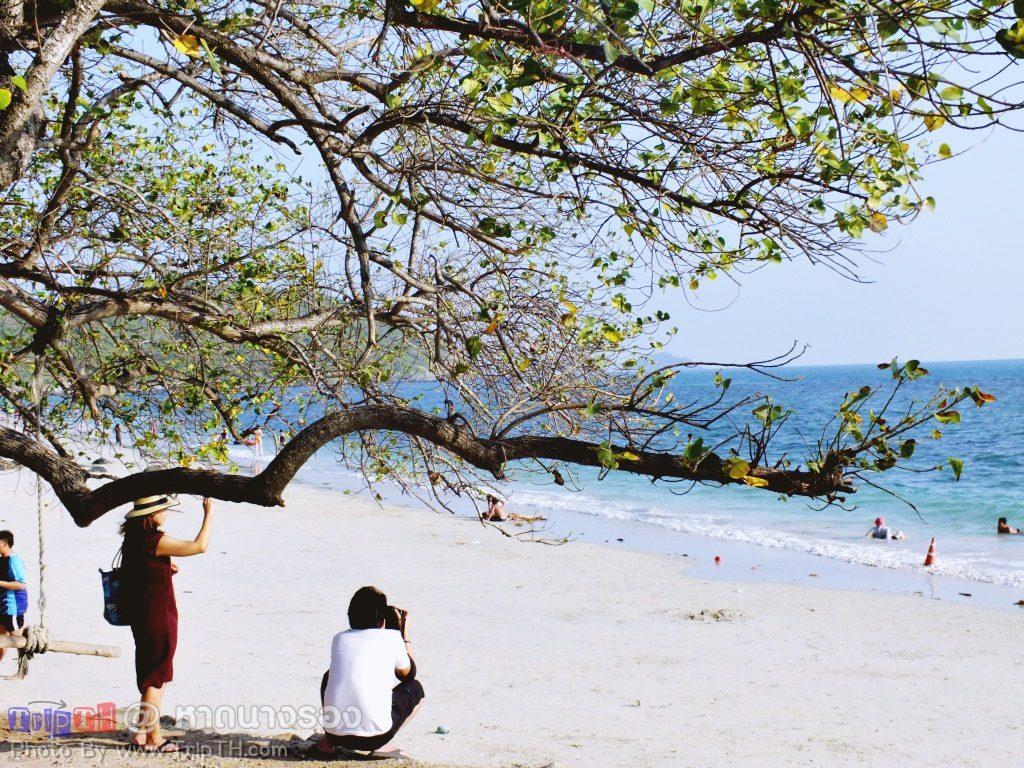หาดนางรอง สัตหีบ (4)
