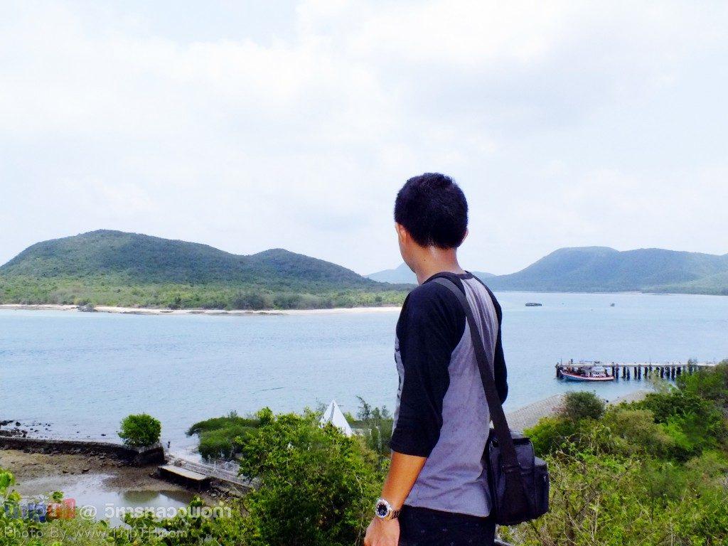 ชมวิว เกาะแรด เกาะแสมสาร (1)