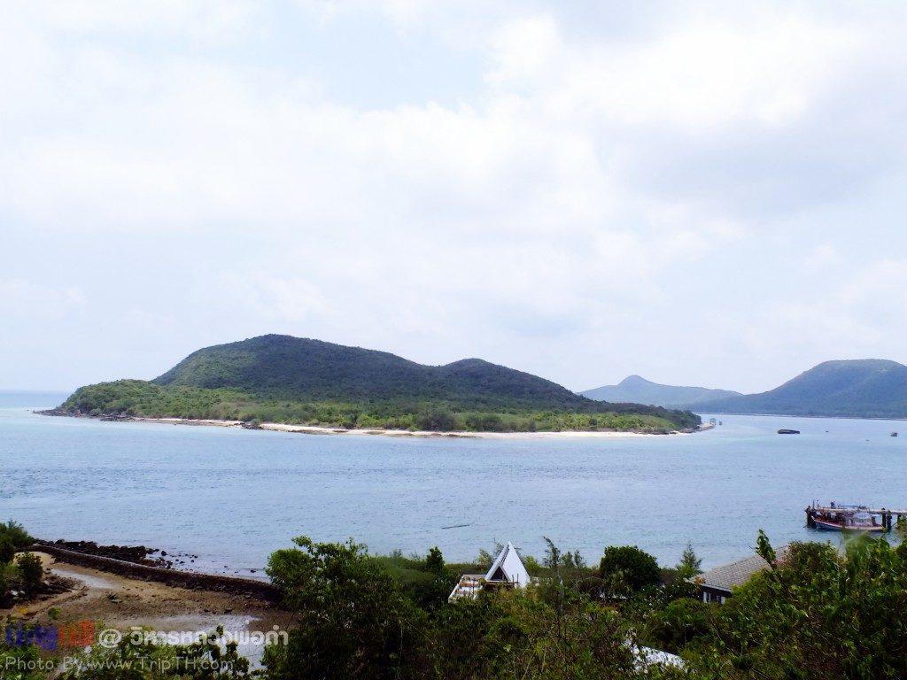 ชมวิว เกาะแรด เกาะแสมสาร (2)