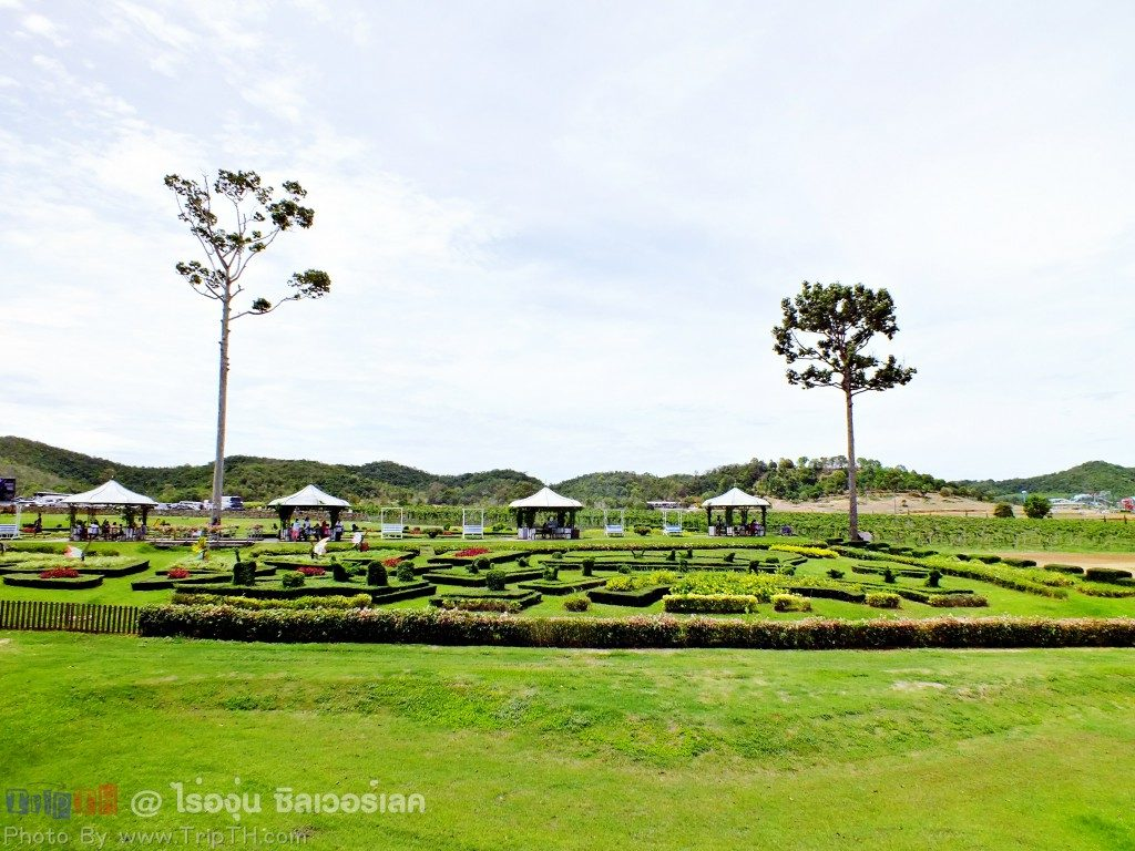 สวนดอกไม้ ซิลเวอร์เลค(2)